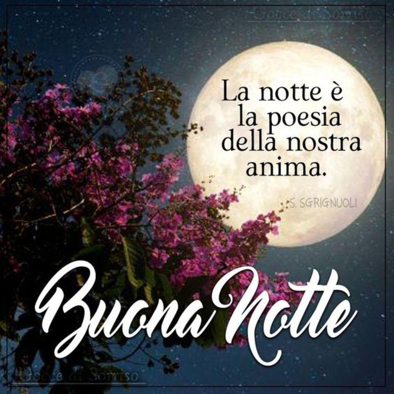 Immagini Da Condividere Sulla Buonanotte Gratis 3921
