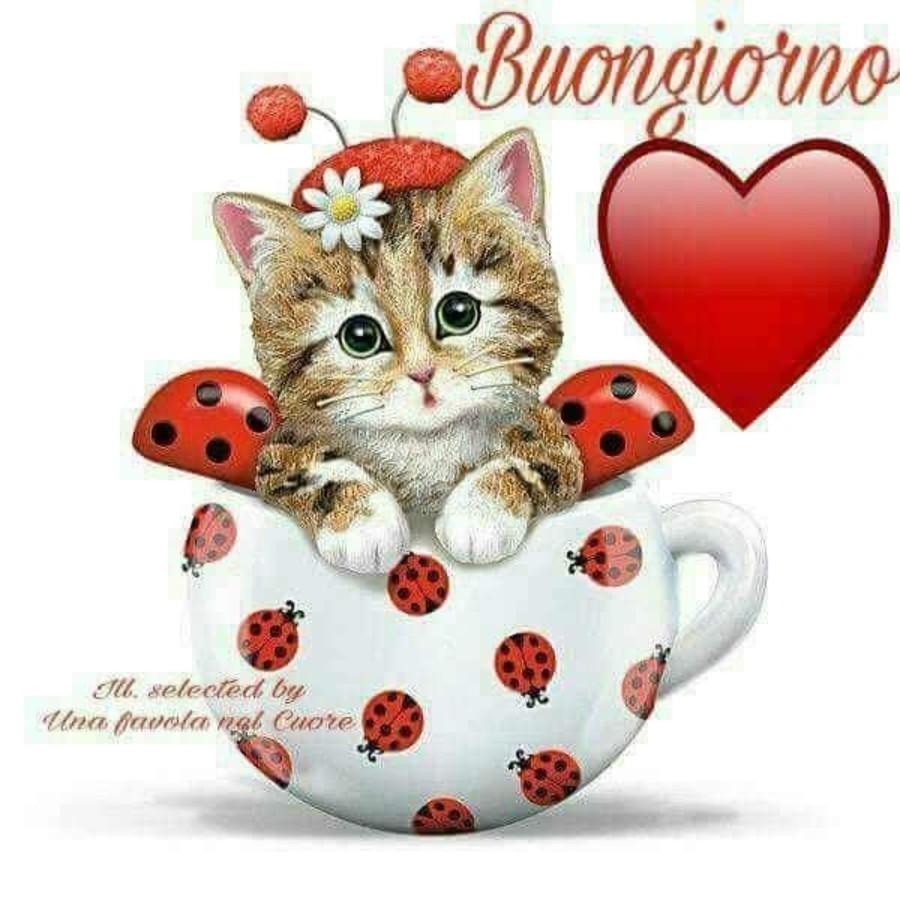Scarica vignette buongiorno gratis 7661 for Buongiorno o buon giorno immagini
