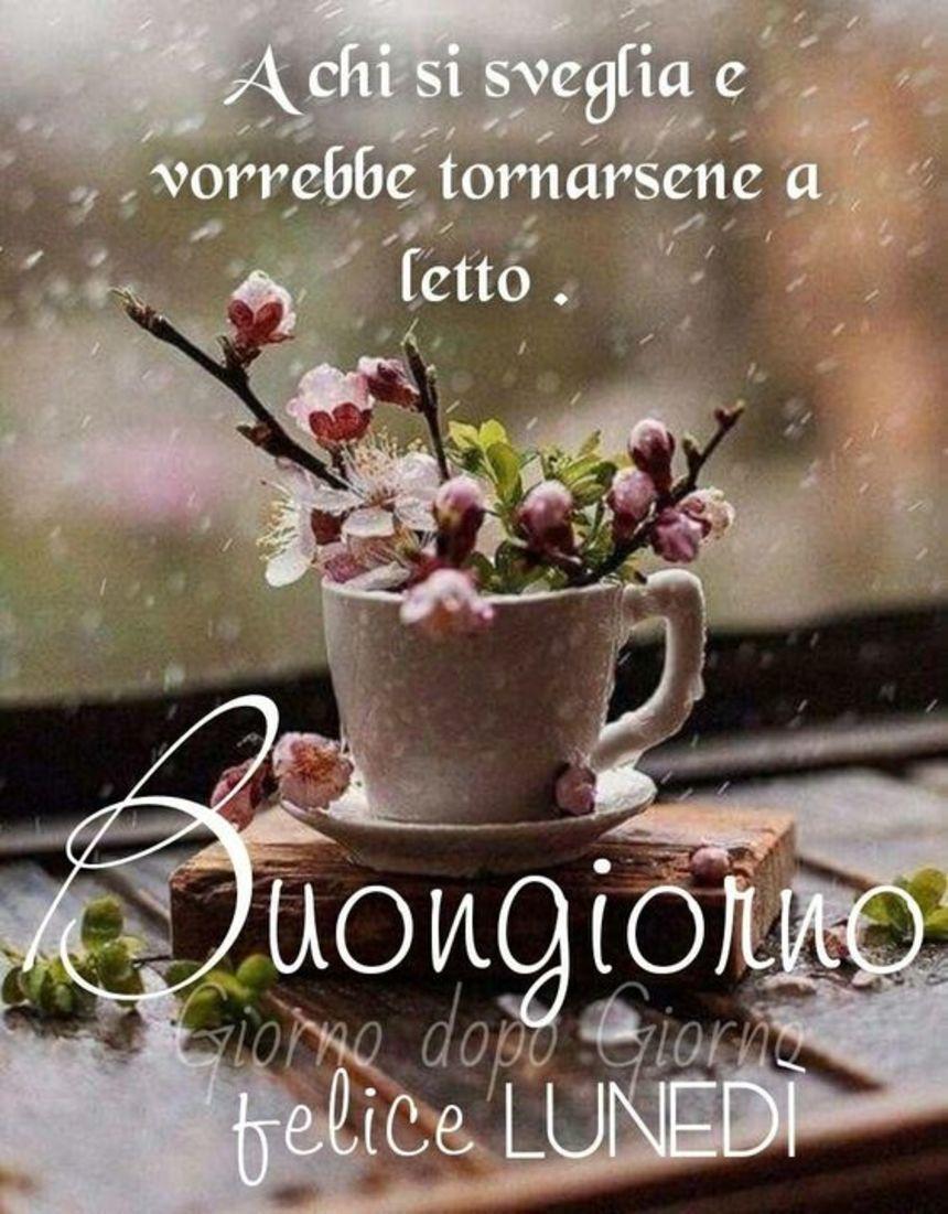 Buon luned buongiorno 4011 for Buon lunedi whatsapp