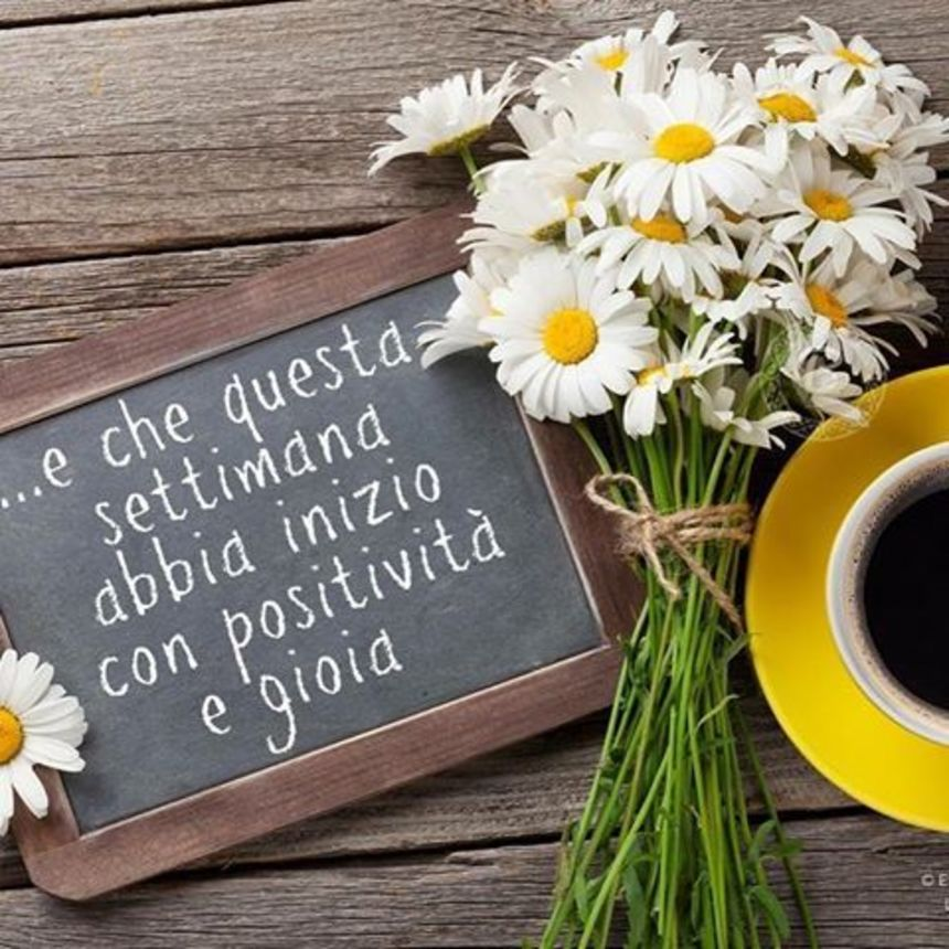 Buon Lunedì con i fiori (4)