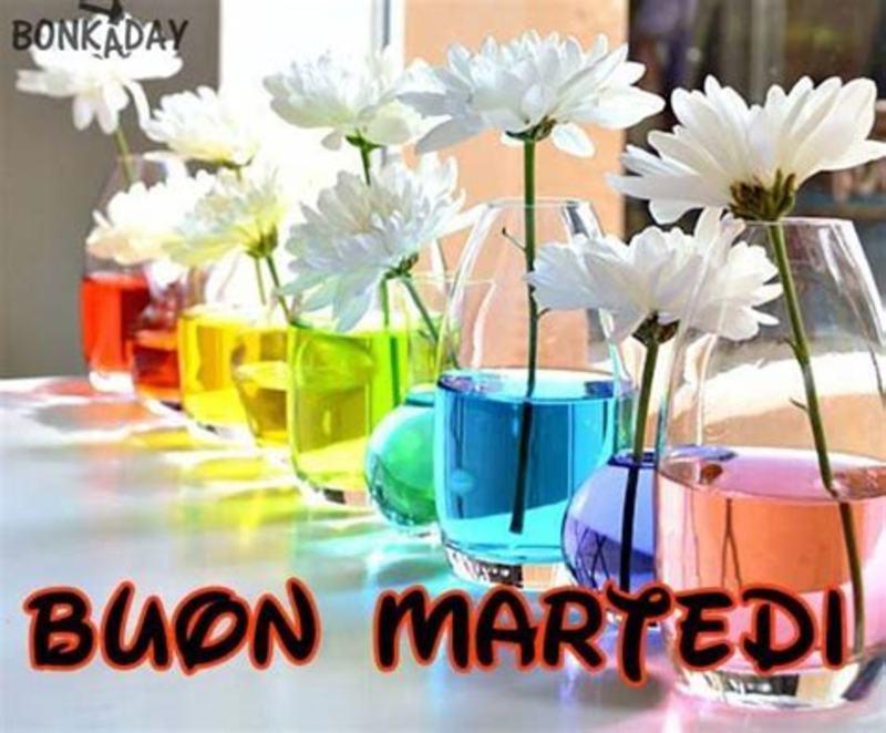 Buon Martedì amici e amiche di facebook 2446