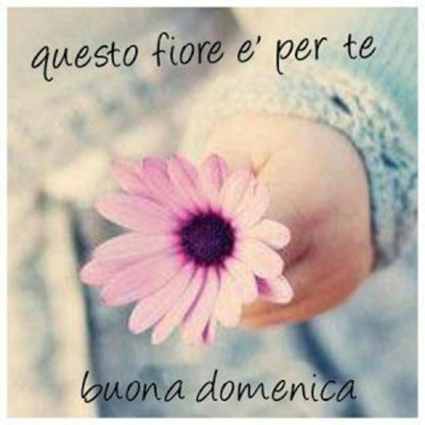 Buona Domenica A Tutti I Miei Amici Bellissimeimmagini It