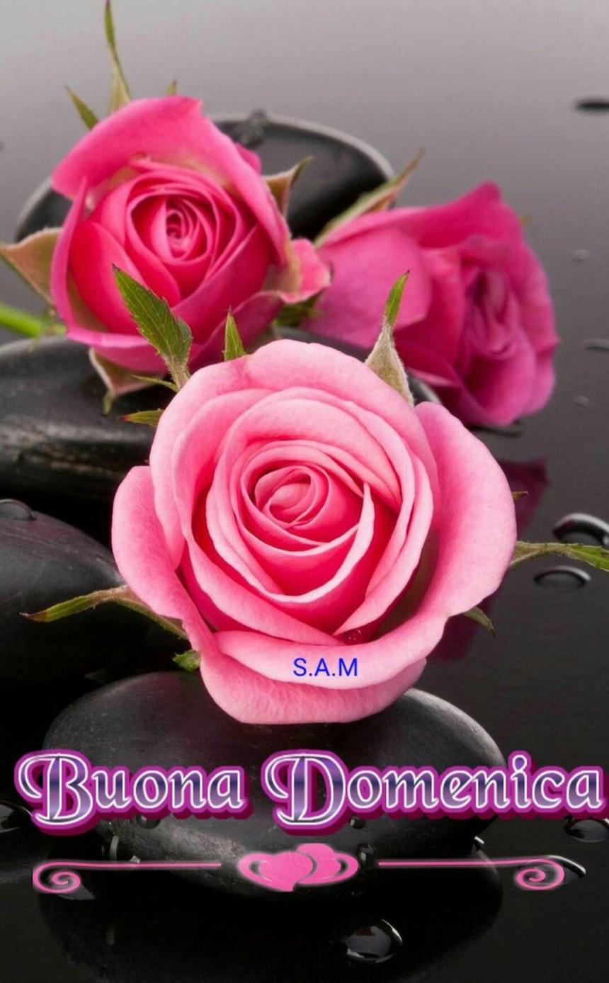 Buona Domenica A Tutti I Miei Amici 3488 Bellissimeimmagini It
