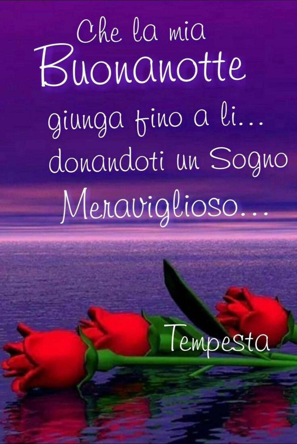 Buonanotte Amore Mio 3332 Bellissimeimmagini It