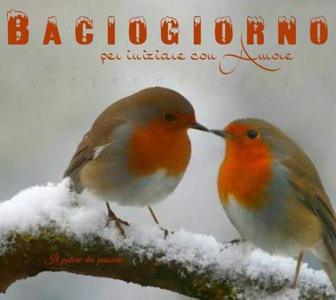 Foto Buongiorno Con La Neve.Immagini Buongiorno Neve Freddo Bellissimeimmagini It