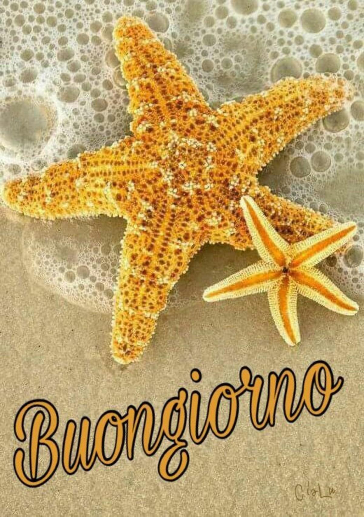 Immagini buongiorno vacanze estive for Vacanze immagini