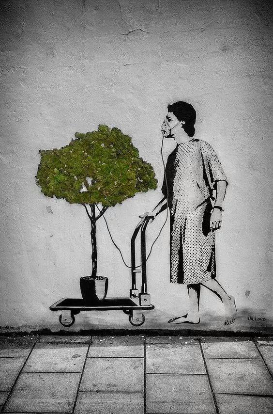 Immagini belle da condividere sensibilizzazione per l'ambiente