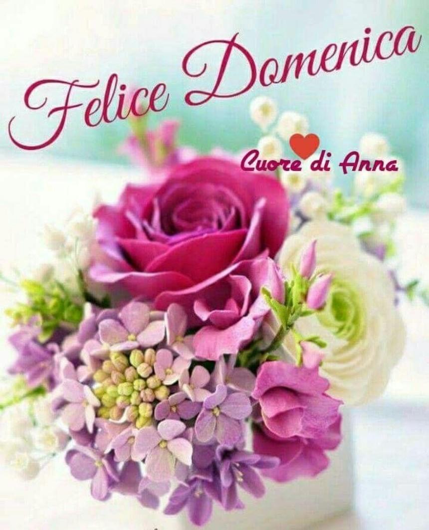 Immagini per Buona Domenica con i fiori (6)