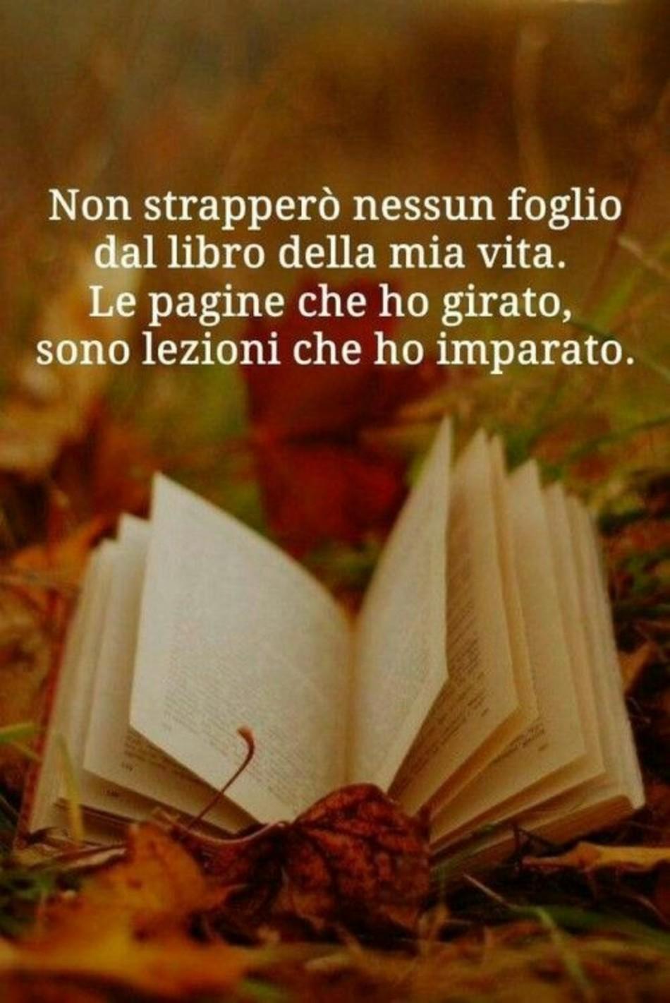 Frasi D Amore Che Toccano Il Cuore 3 Bellissimeimmagini It