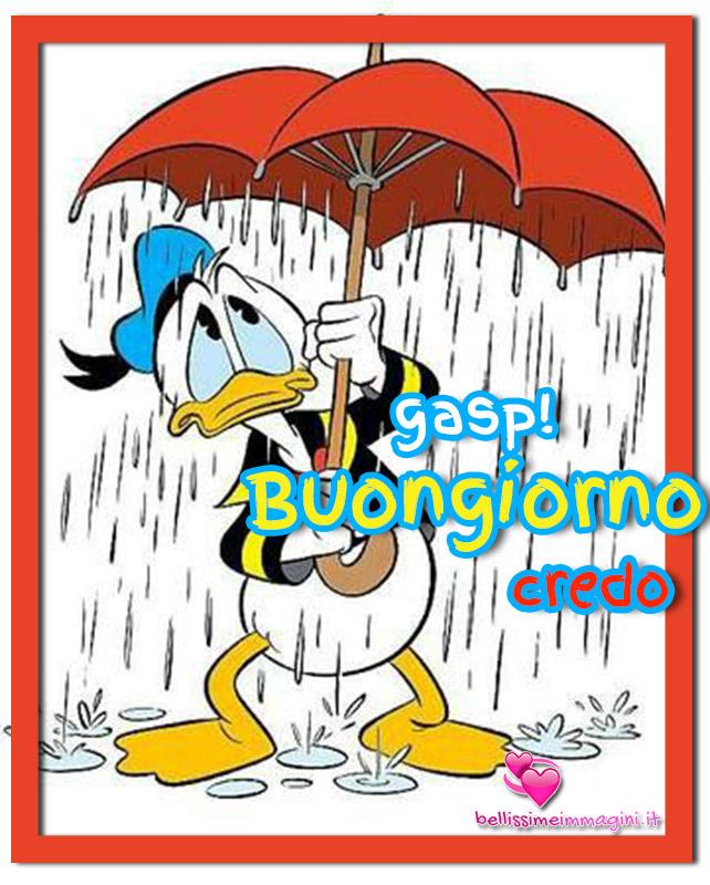 Buongiorno con la pioggia immagini nuove