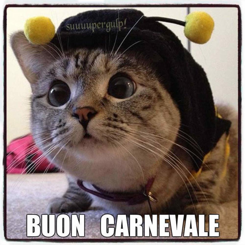 Bellissime immagini Buon Carnevale