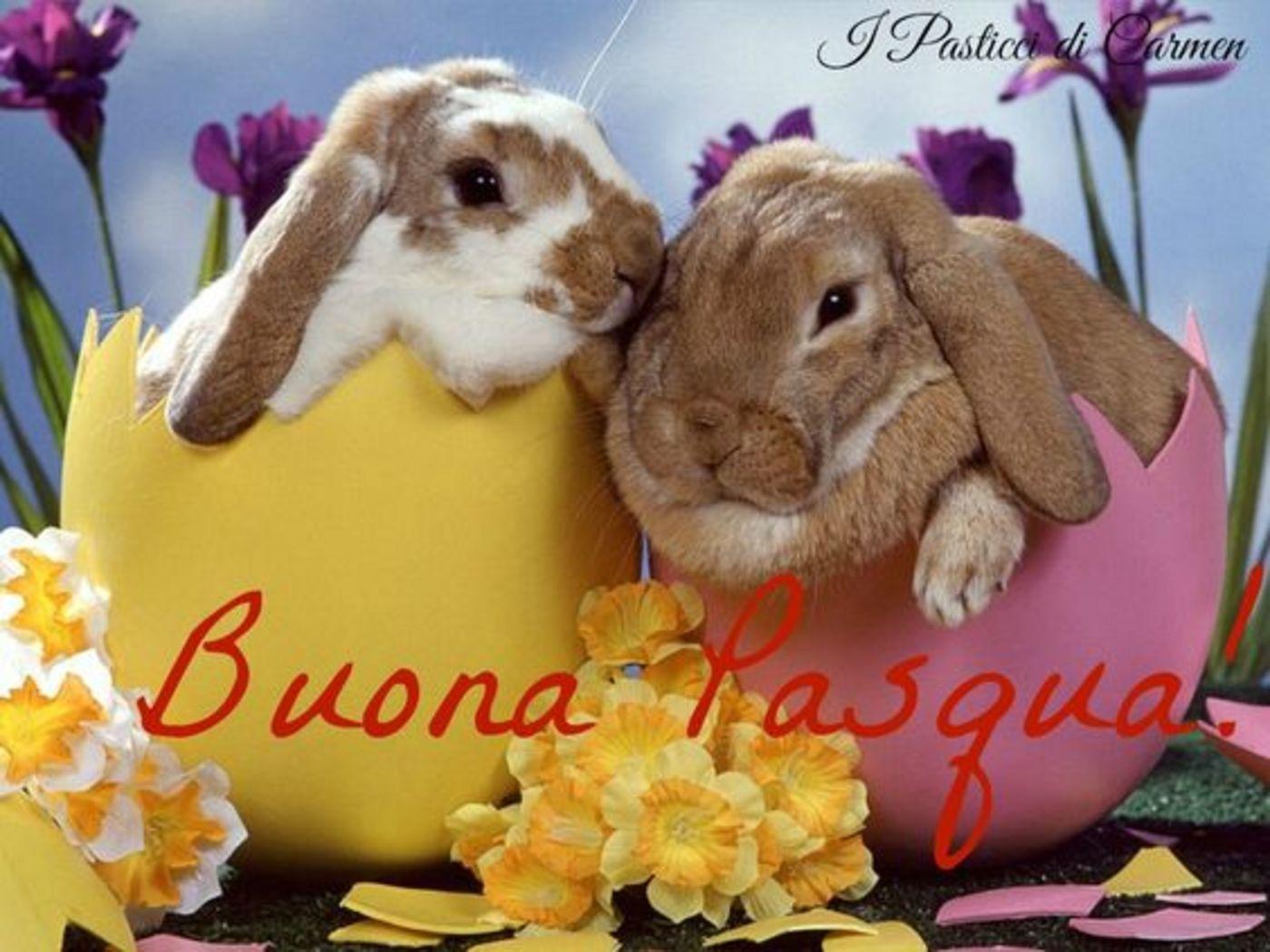 Buona Pasqua immagini 2019
