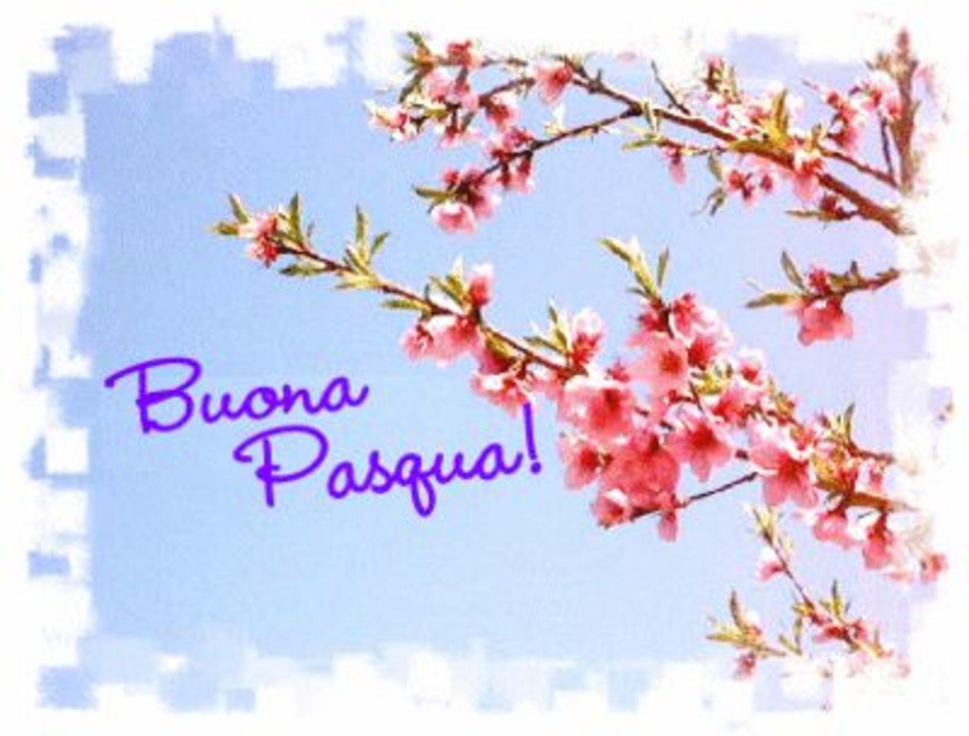 Buona Pasqua immagini auguri Facebook 4756