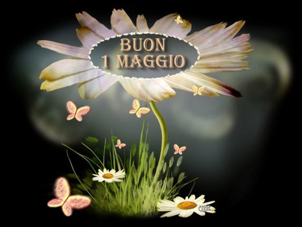 fiori-1maggio